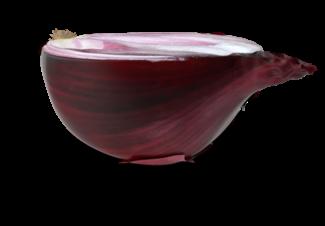 cipolla3d